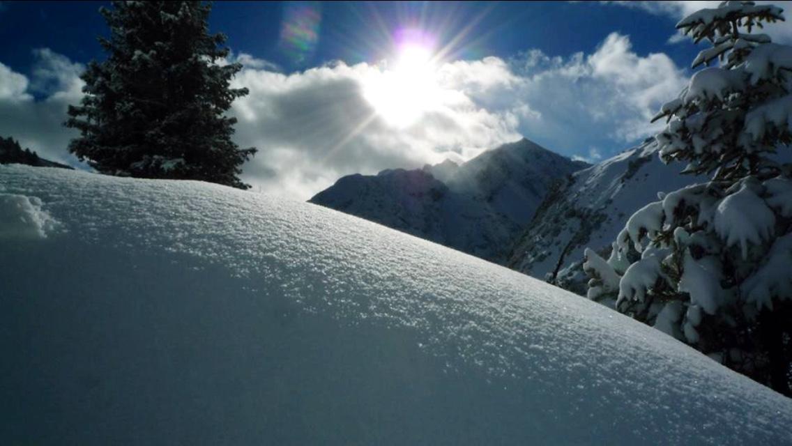 Snowfritz-Arlberg - the header image